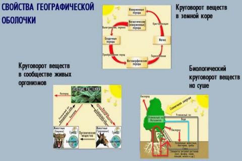 схема `Свойства географической оболочки` - Андрей Павлович Королев.