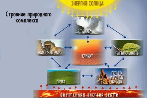 схема `Строение природного комплекса` - Андрей Павлович Королев.